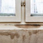 6 Tips voor het verminderen van vocht in een vochtige kelder